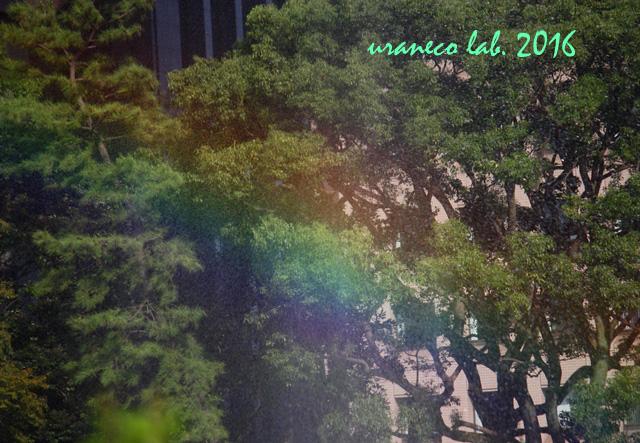 9月23日虹