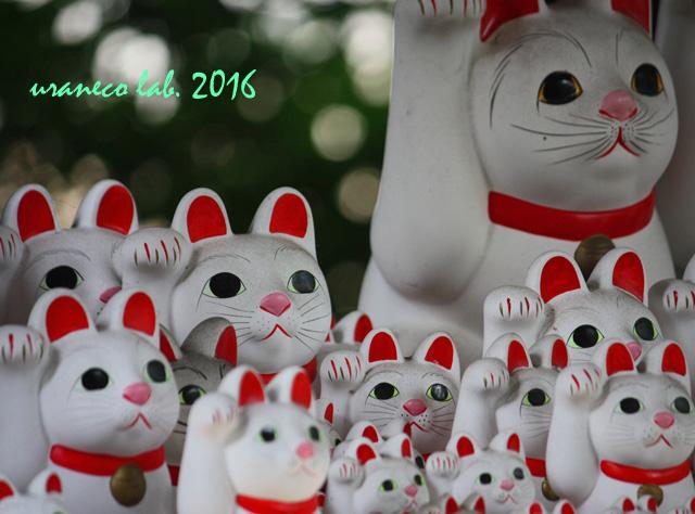 9月23日招き猫軍団2
