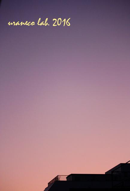 11月14日黎明