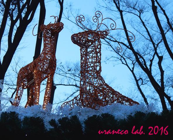 12月19日クリスマスマーケット5
