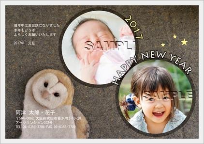③写真入り年賀状_5ふくろう-01
