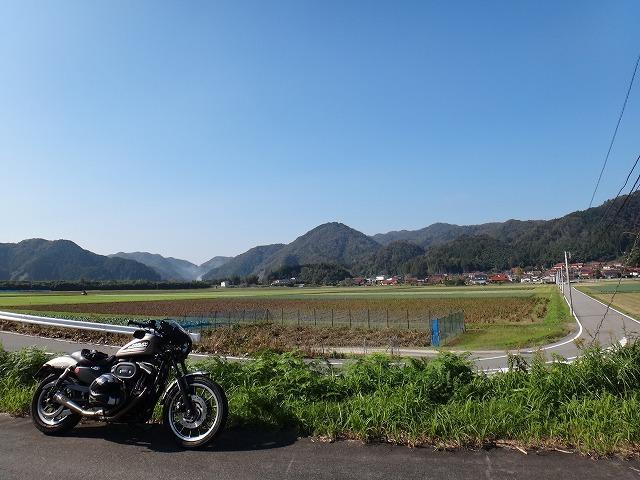 s-11:29桜江