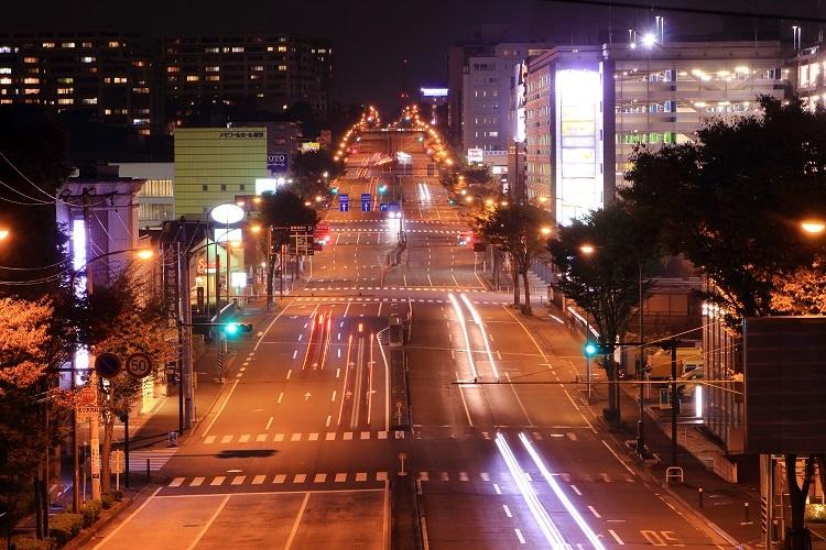 20161112歴博通り-1a