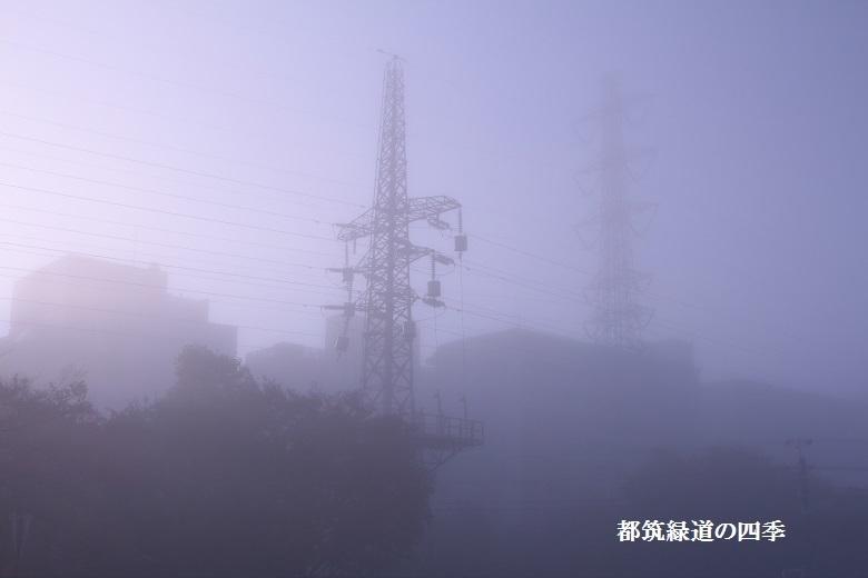 20161120新横浜-2a