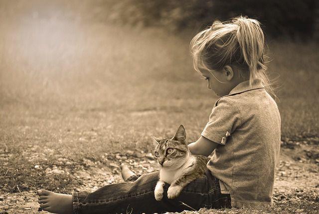 少女 ネコと お話