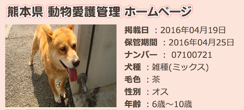 kumamoto_20160420032838e0f.png