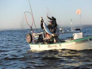 DSCF7978 つる丸さんから貰った釣った直後 後ろにタダノさん