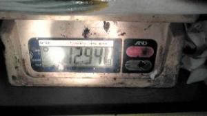20161210204042 カワノさん巨マサ約13kg