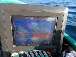 PC180015 8時半の魚探