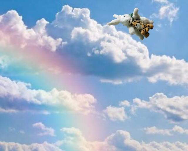 天空を飛翔するチャッピー