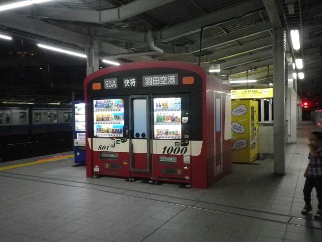 IMGP0040.jpg