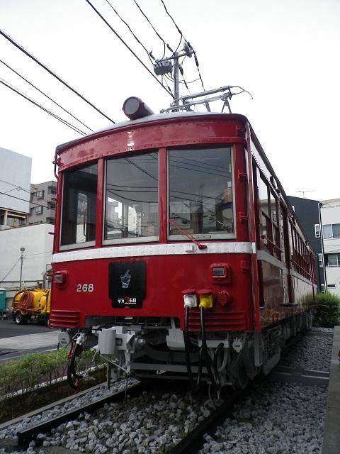 IMGP0136.jpg