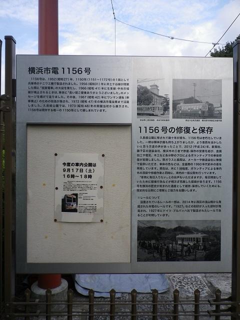 IMGP1405.jpg