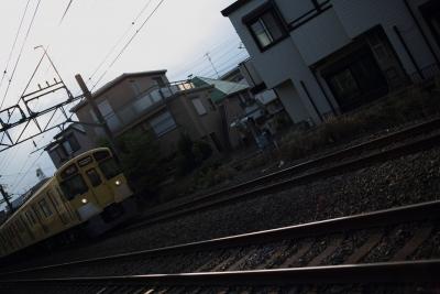 5D3B5981.jpg