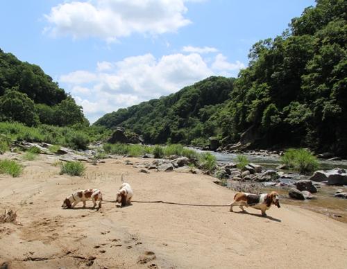 岩倉峡0008