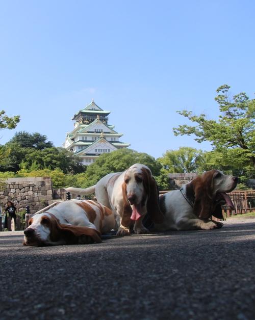 大阪城0011
