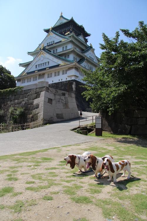 大阪城0013