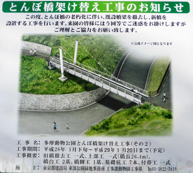 とんぼ橋11