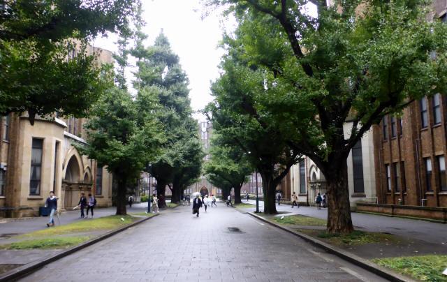東京大学/安田講堂3