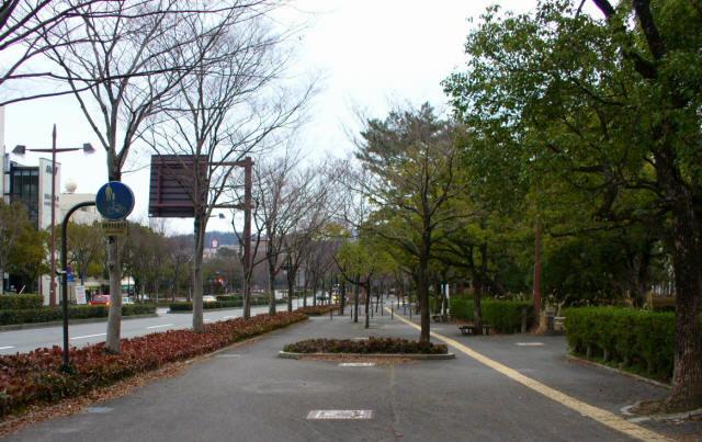 山口パークロード4