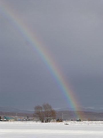 16 12/1 虹