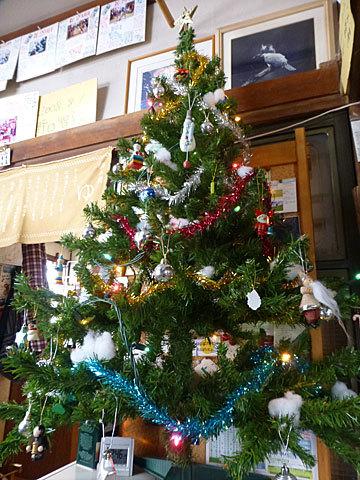 16 12/16 クリスマスツリー