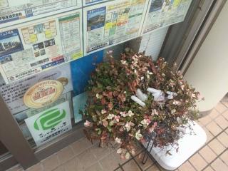 田口不動産 吹上店 吹上駅東口徒歩1分