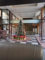 クリスマスツリー161218