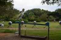 恐竜のエリア160827