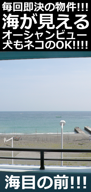 ■バルコニーからも海が良く見えますよ~■物件番号P4743 毎回即決成約の海一望のペット可マンション!30平米の1K!敷金ゼロ!礼金ゼロ!賃料8万円!