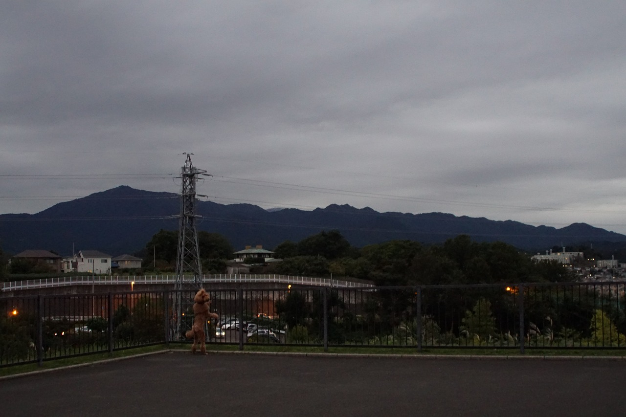 s-DSC01071.jpg