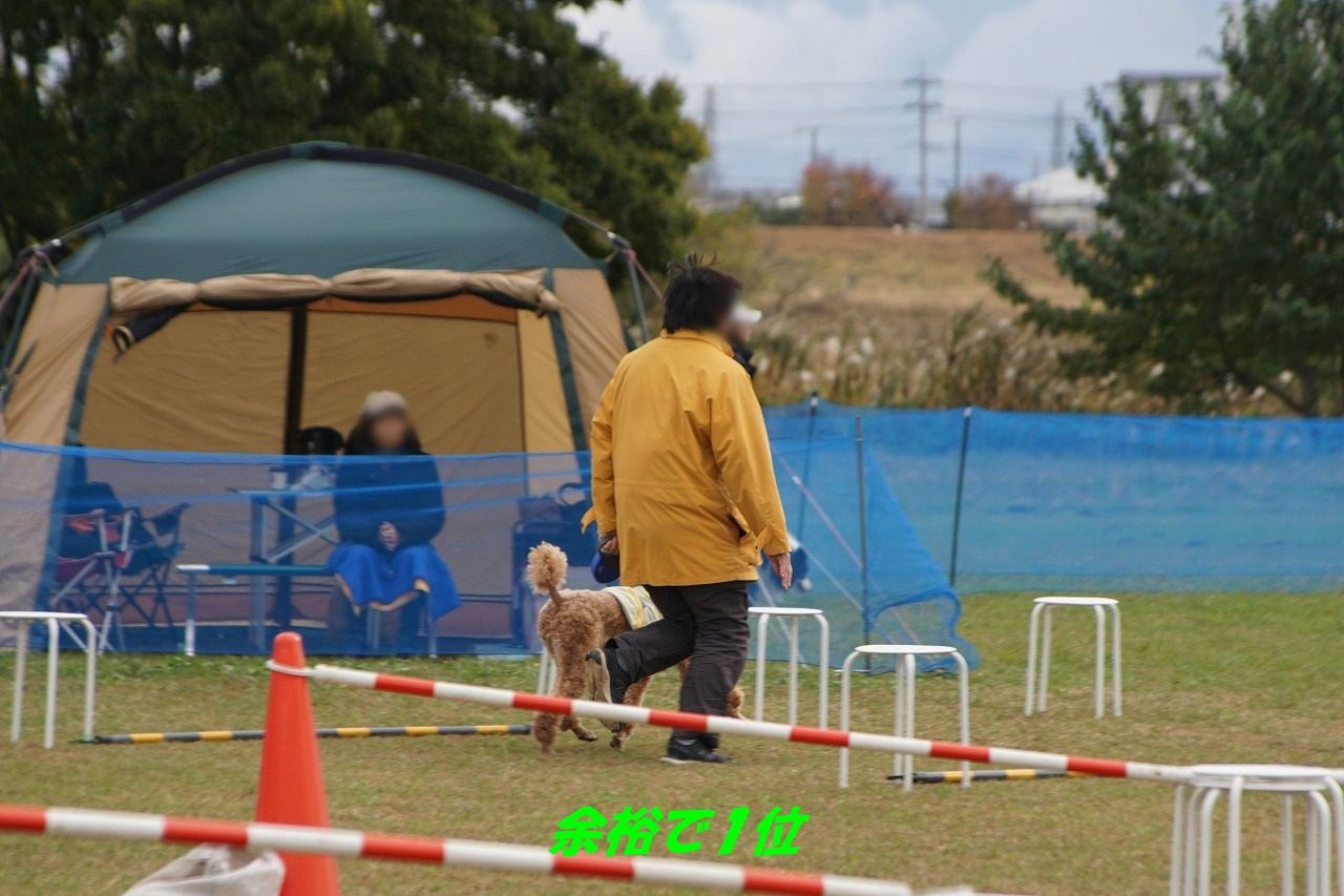 s-DSC01934.jpg