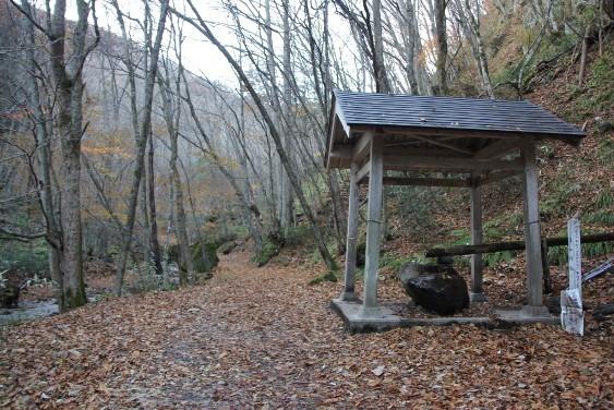 洗心所敷と林道