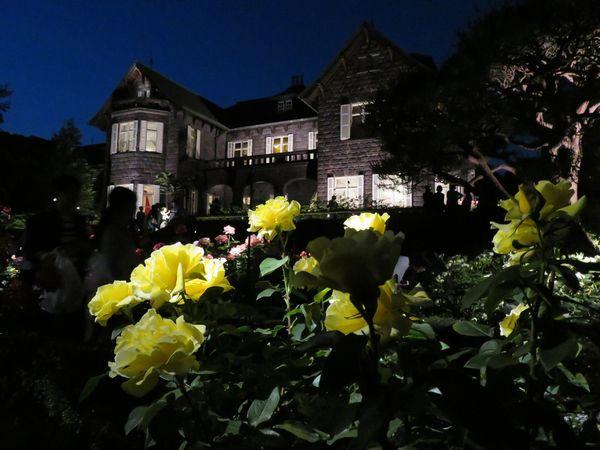 旧古河庭園ライトアップ