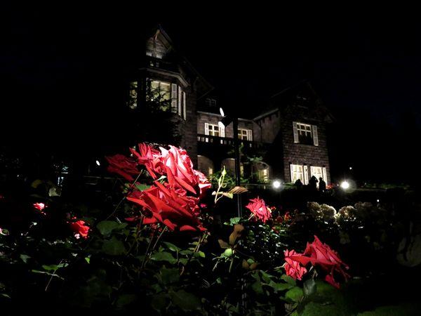 洋風庭園のバラと洋館
