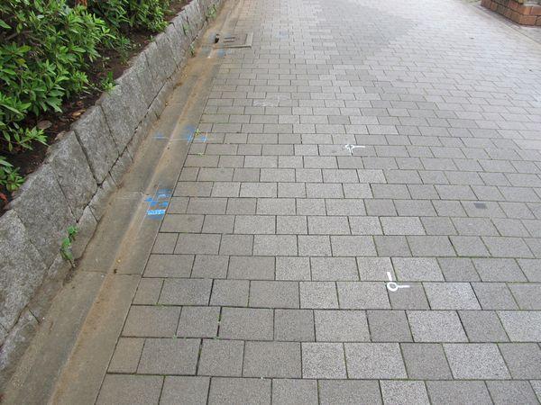 公園内の通路には取り壊し範囲などが至る所にペイントされていた。