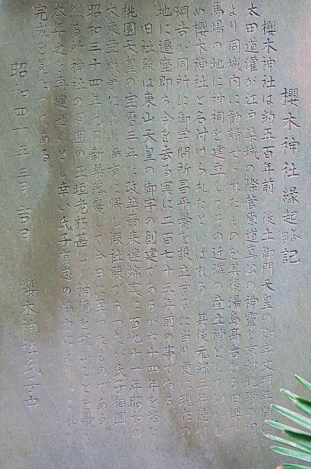 160421sakura05.jpg