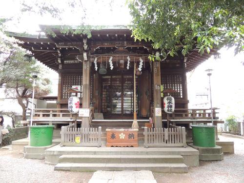 160421sakura06.jpg