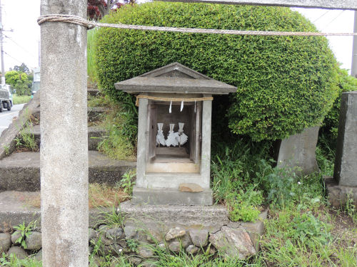 160525aoyagi52.jpg