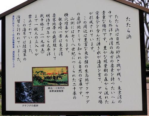 160601miura46.jpg