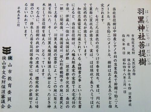 160623mitugi52.jpg