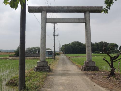 160705yoshimi02.jpg