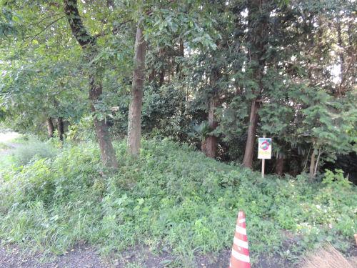 160730shiroyama01.jpg