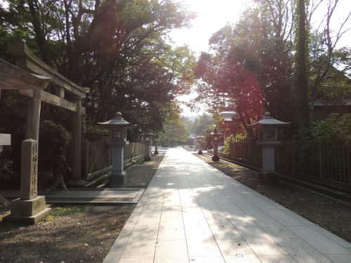 160808kehi10.jpg