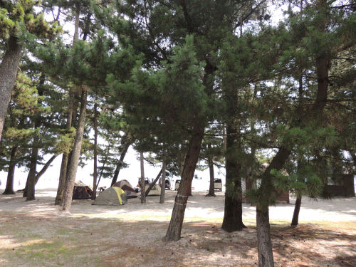 160812shirahige06.jpg