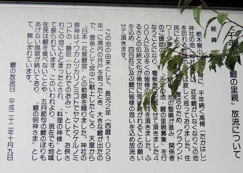 161101takahashi26.jpg