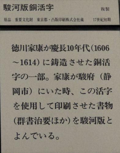 161119sakura10.jpg