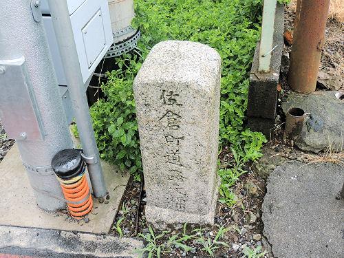 161119sakura101.jpg