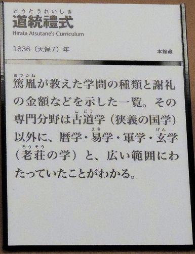 161119sakura56.jpg