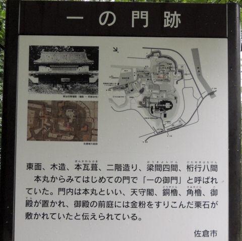161119sakura74.jpg